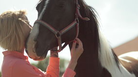 Young woman caressing a horse stock footage