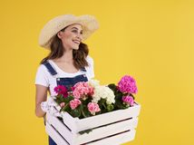 Young woman carrying wooden crate with beautiful flowers stock image