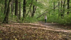 Young woman walking among the woods. Walking among the trees in forest. stock footage