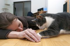 Young woman with cat Stock Image