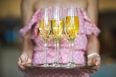 Young woman with champagne glasses on tray. Young woman with champagne glasses on the tray stock photos