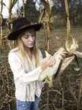 Young woman checking ear of corn in corn field Royalty Free Stock Photo