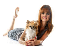 Young woman and chihuahua Stock Photography