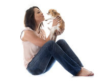 Young woman and chihuahua Royalty Free Stock Images