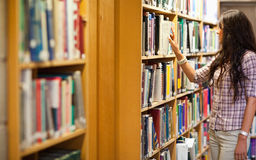 Young woman choosing a book Royalty Free Stock Photo