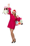 The young woman in christmas shopping concept. Young woman in christmas shopping concept Royalty Free Stock Image