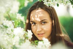 Young woman with clean skin near a blooming apple tree. gentle portrait of girl in spring park. royalty free stock photos