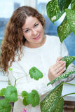 Young woman cleaning with cloth leaves of the plant Royalty Free Stock Photos