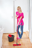 Young Woman Cleaning Home Royalty Free Stock Photo