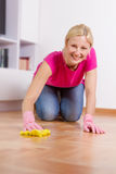 Young Woman Cleaning Home Stock Photos