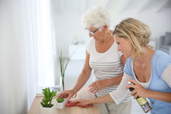 Young woman cleaning senior's home Royalty Free Stock Image