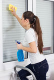 Young Woman Cleaning Windows Glass Royalty Free Stock Images