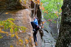 Young woman climbing. Rock climber ascending a sport route in Red River Gorge, Kentucky, on some wonderful sandstone Royalty Free Stock Image