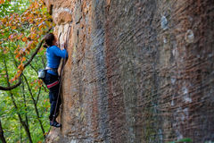 Young woman climbing. Rock climber ascending a sport route in Red River Gorge, Kentucky, on some wonderful sandstone Stock Images