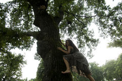 Young woman climbing a tree Royalty Free Stock Images