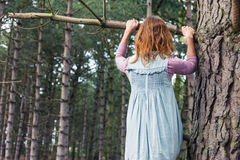 Young woman climbing a tree Royalty Free Stock Photos