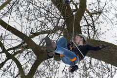 Young woman climbs a tree Royalty Free Stock Photos