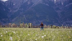 Young woman collect field flowers and weave dandelion wreath on scenic mountain landscape. General plan. 4k stock video