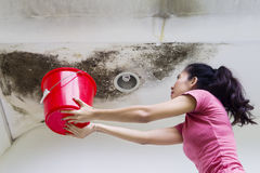 Young woman collecting drops rainwater royalty free stock photography