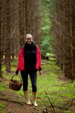 Young woman collecting mushrooms in forest Royalty Free Stock Images