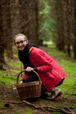 Young woman collecting mushrooms in forest Stock Images