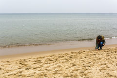 Young woman while collecting shells on the beach on the Baltic Sea Royalty Free Stock Images