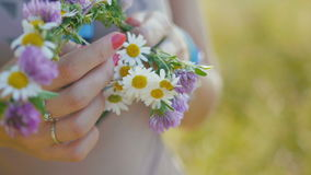 Young woman collects a wreath of daisies in meadow of flowers, close up stock video footage