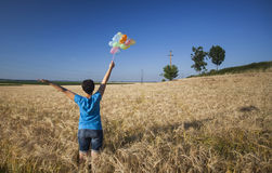 Young woman with colorful balloons in summer field Royalty Free Stock Photo