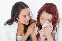 Young woman consoling a crying female friend Royalty Free Stock Photo