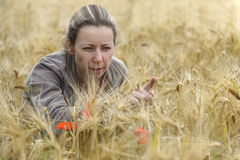 Young woman in cornfield Stock Image