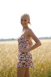 Young woman in a cornfield. Young blonde woman in a summer dress is standing in front of a cornfield Royalty Free Stock Photos