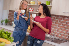 Young woman couple in kitchen Royalty Free Stock Images