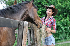 Young woman in  cowgirl style feeding horse Royalty Free Stock Photography