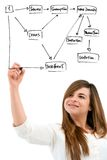 Young woman creating diagram with marker pen. Stock Image