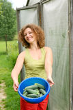 Young woman with crop of cucumbers Royalty Free Stock Photos
