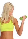 Young woman curling Dumbbell Stock Image