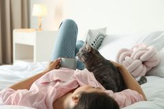 Young woman with cute cat on bed at home royalty free stock photo