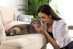 Young woman with cute cat. Pet and owner. Young woman with cute cat at home. Pet and owner royalty free stock image