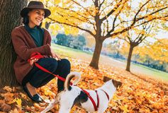 Young woman with cute dog sitting under tree in autumn park Stock Images