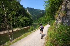 Young woman cycling along Dunajec river, Poland Stock Images