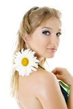 Young woman with daisy flower Royalty Free Stock Images