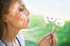 Young woman with dandelions Stock Images