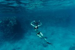 Young woman diving on a breath hold by a coral reef sea. Young woman diving on a breath hold by a coral reef stock images