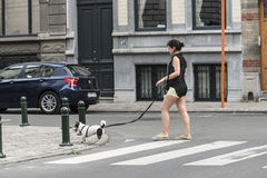 A young woman with a dog. BRUSSELS, BELGIUM - JULY 4, 2015: A young woman with a dog walks on a pedestrian crossing in one of the streets of the city royalty free stock image