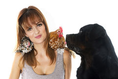 Young woman, dog and chicken Stock Photo