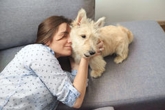 Young woman with a dog at home. Girl in blue shirt playing with white scotch terrier on the flour Stock Images