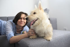 Young woman with a dog at home. Girl in blue shirt and trousers playing with white scotch terrier Stock Photo