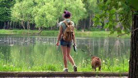 Young woman with a dog by a lake stock video