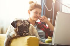 Young woman and dog with laptop . Work at home. Pug. Young woman and dog with laptop. Work at home royalty free stock photo