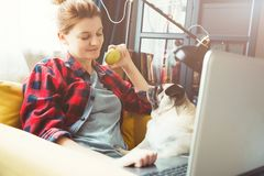 Young woman and dog with laptop . Work at home. Pug. Young woman and dog with laptop. Work at home royalty free stock photos